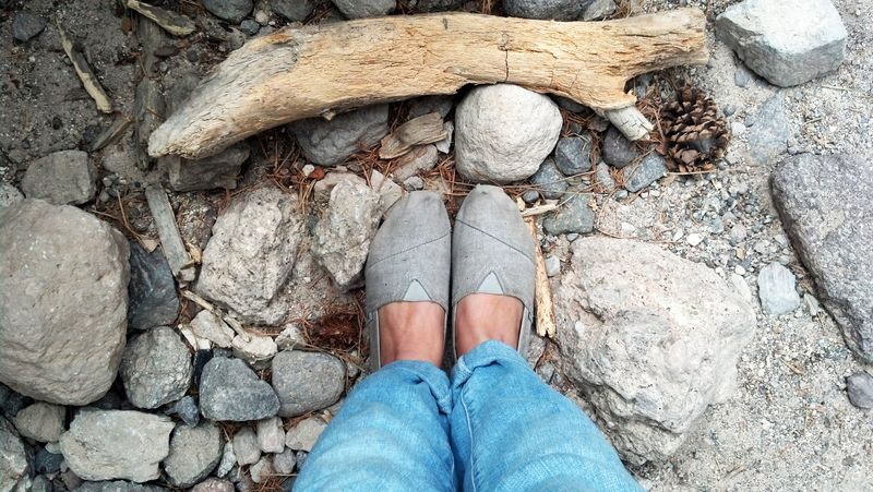 Toms and rocks